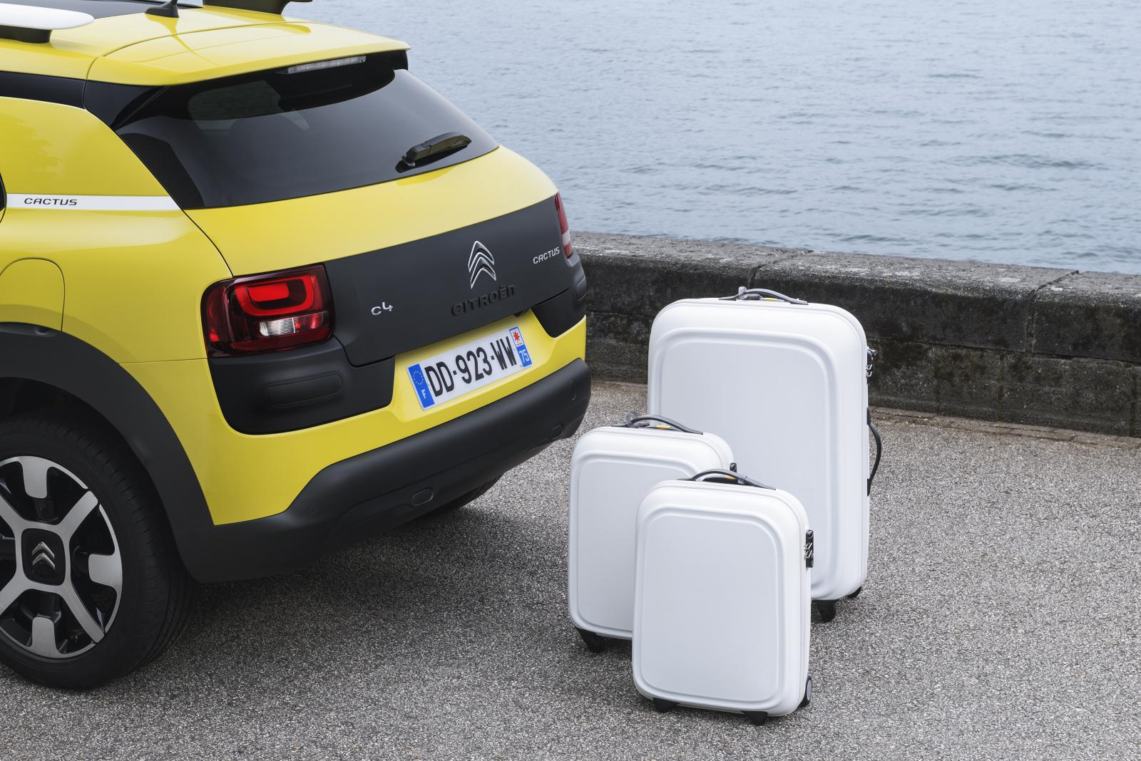 C4 Cactus Feel edition 2014 boot closed rear
