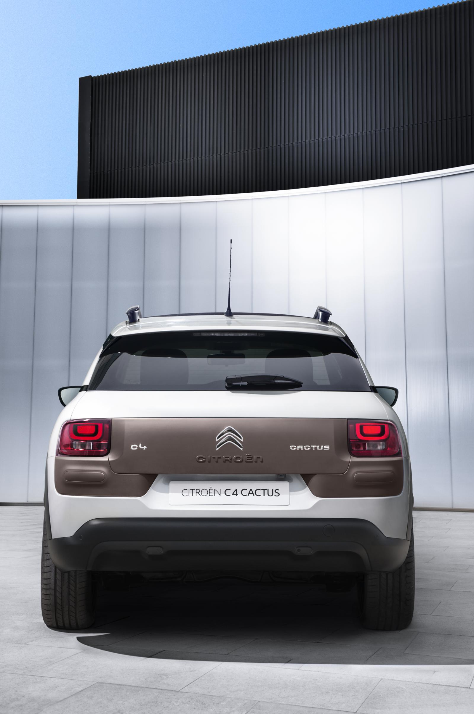 C4 Cactus Shine Edition 2014 rear view rear