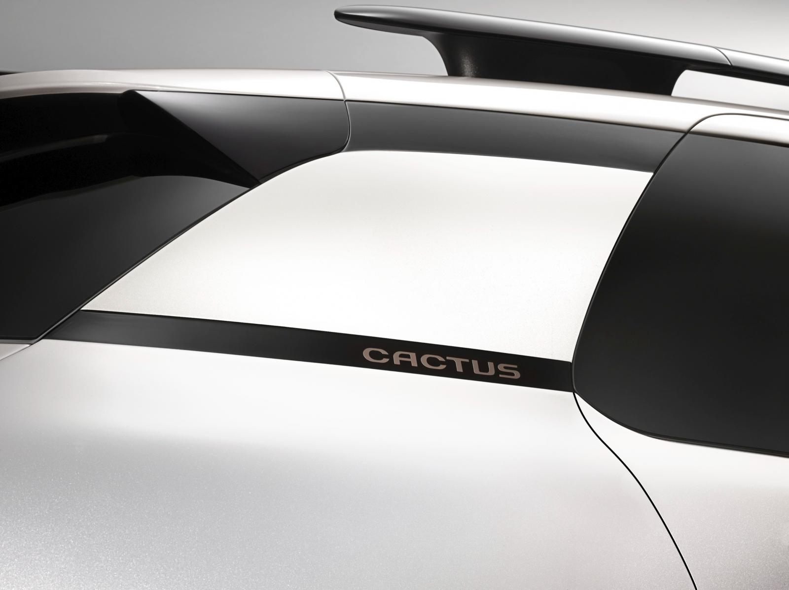 C4 Cactus Shine edition 2014 rear quarter panel logo